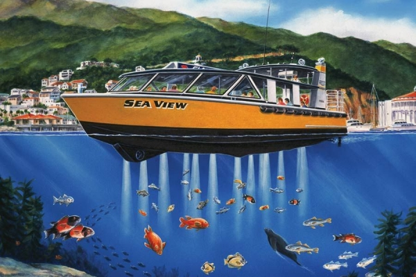SeaView 49′ Glass Bottom - 3